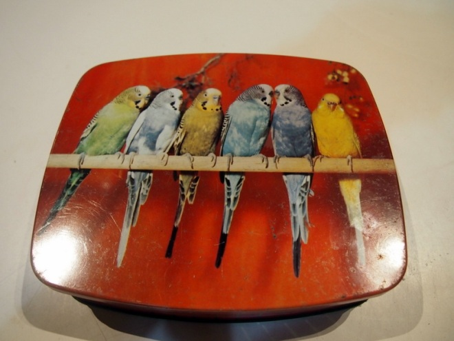 Old Allens tin with Budgies. Much cuter than that other Budgie Smuggler man in speedos.