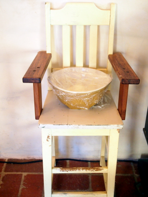 Hand made Australian high chair becomes a proving station.