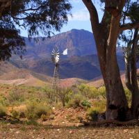 Art and Beauty in the Australian Outback