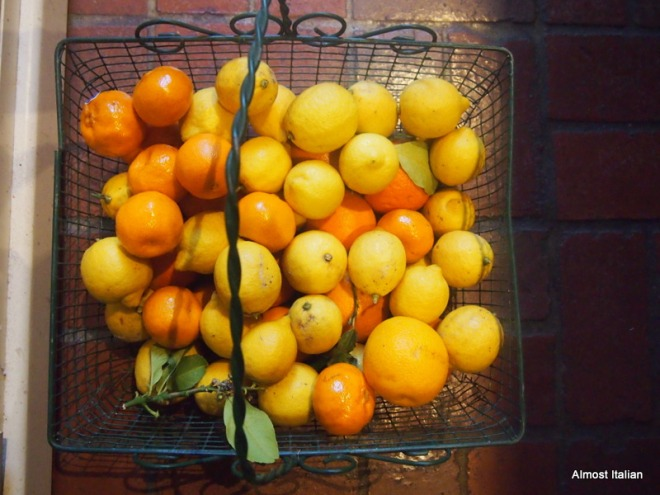 Citrus Season in Melbourne