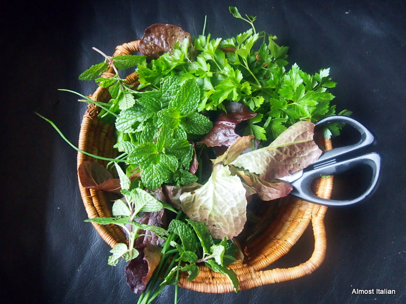 Winter Herbs and Leaves,