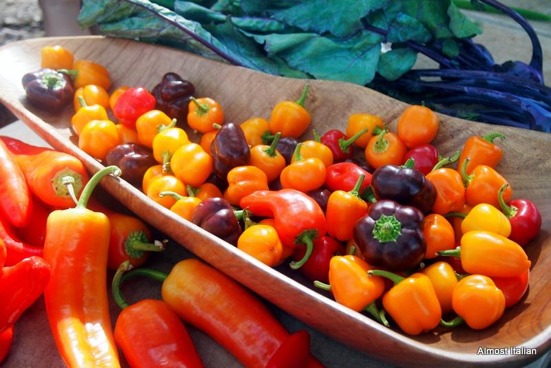 Chilli stall at Mossman market.