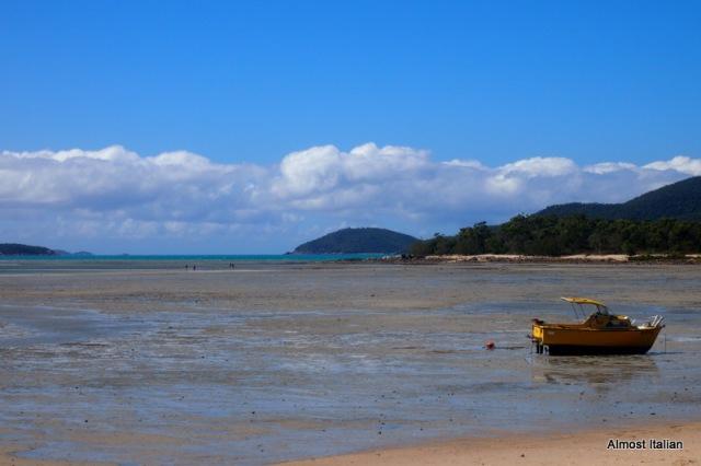 Low tide at Dingo Beach, North Queensland, Australia
