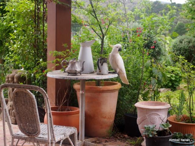 Cockie garden decor