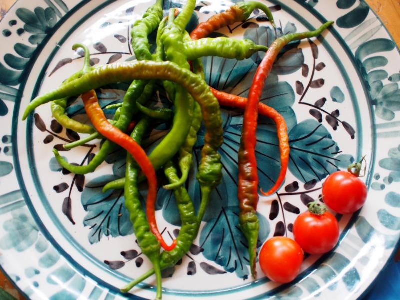 Turkish Hot Peppers, grown in Mildura,bought in Brunswick.