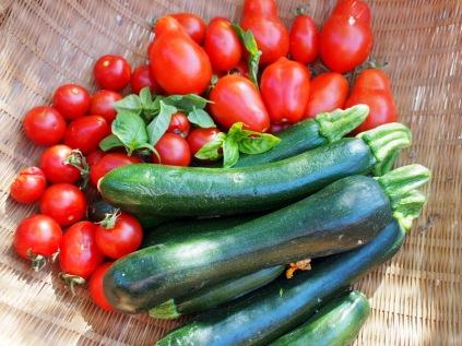 Romas and zucchini