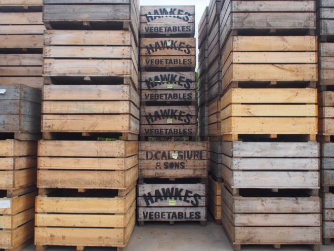 wooden crates at Hawkes farm