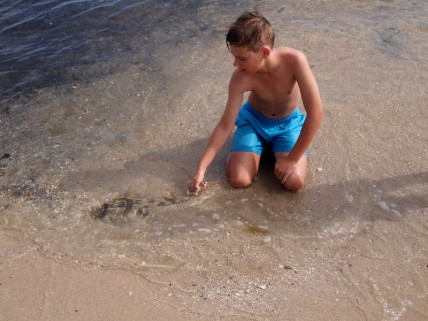 Noah releases his Banjo Shark, a hand caught fish found in at sea.