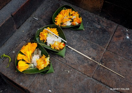 unusual floral offering