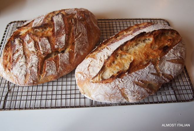 Sourdough loaves, one for now, one for the freezer