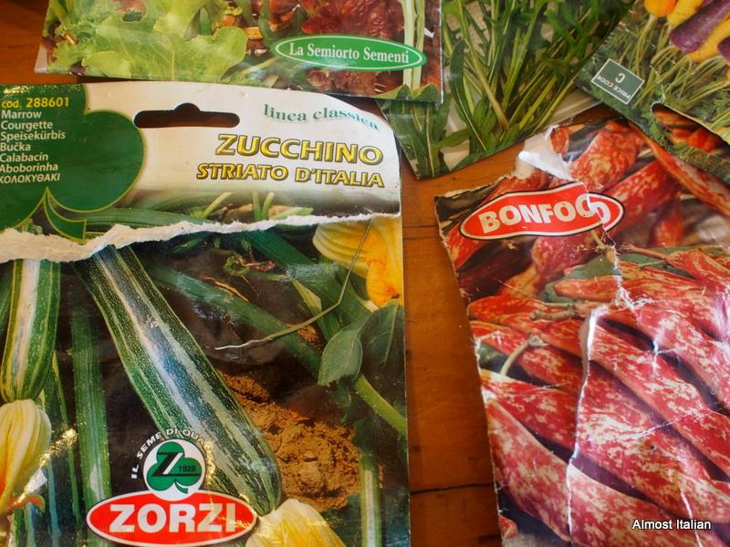 seed packet- Zucchino striato d'Italia