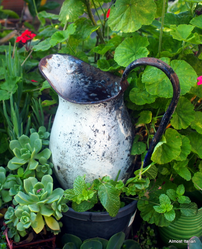 My favourite colonial water pitcher.