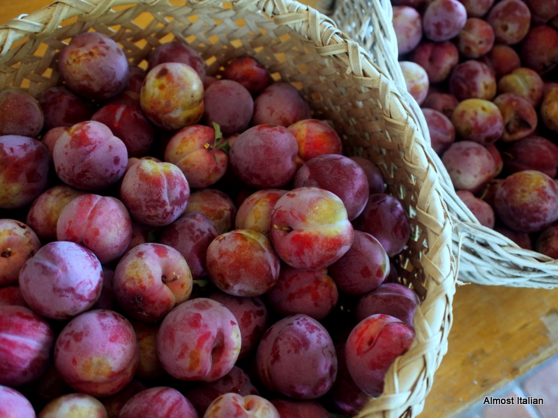 Yes, more plums