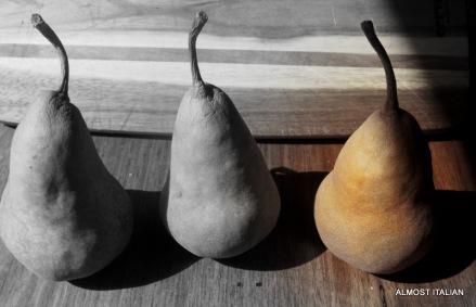 Di's Beurrre Bosc pears