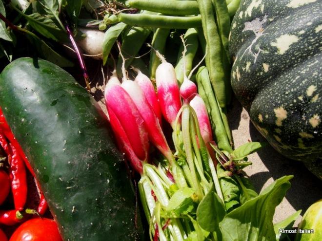 Garden prozac with thai salad almost italian for Giant chilli thai