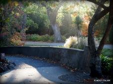 Oamaru public Gardens