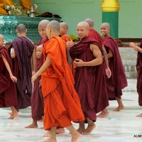 Young Monks of Myanmar