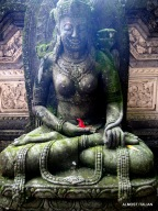 Lotus position. Honeymoon 1. Ubud