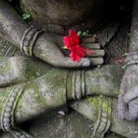 In a Balinese Garden. Ubud