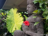 Fresh Hibiscus flowers are replaced daily at Honeymoon.