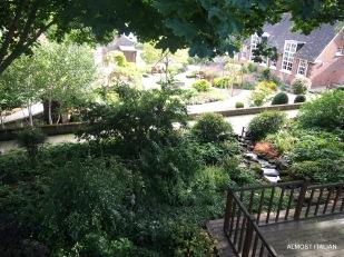 Garden views from York's walls