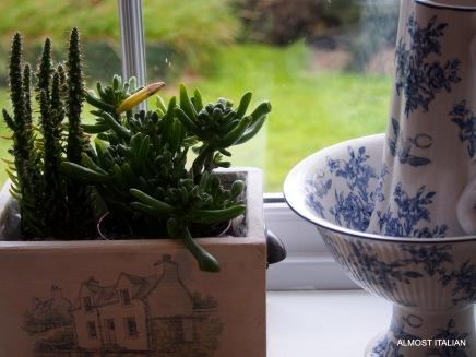 Kitchen window decor