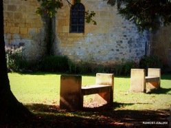 Lovely grounds at Saint-Léon-sur-Vézère