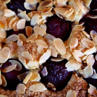Sweet Plums in Summer and an Old Tart Recipe