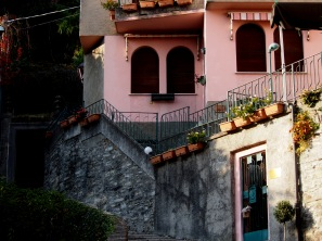 pinks of Laglio