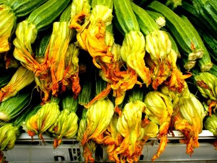 Zucchini Striati