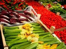 Treviso e Zucchini