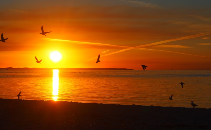 Liquid Sunsets