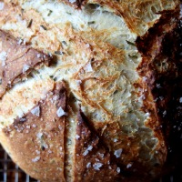 Sourdough Panmarino. Memory and Beatrice d'Este