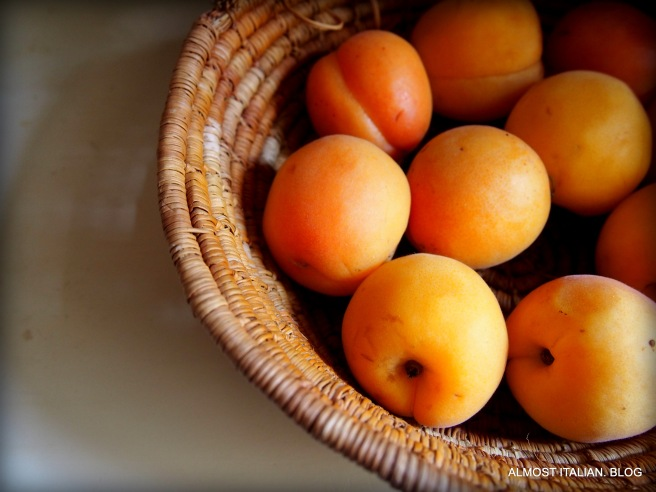 First of the apricots