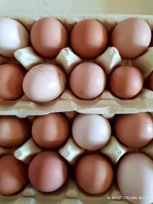Free range eggs, one dozen a day.