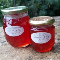 Time's Winged Chariot and Quince Jelly