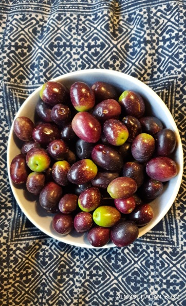 Olives from our trees